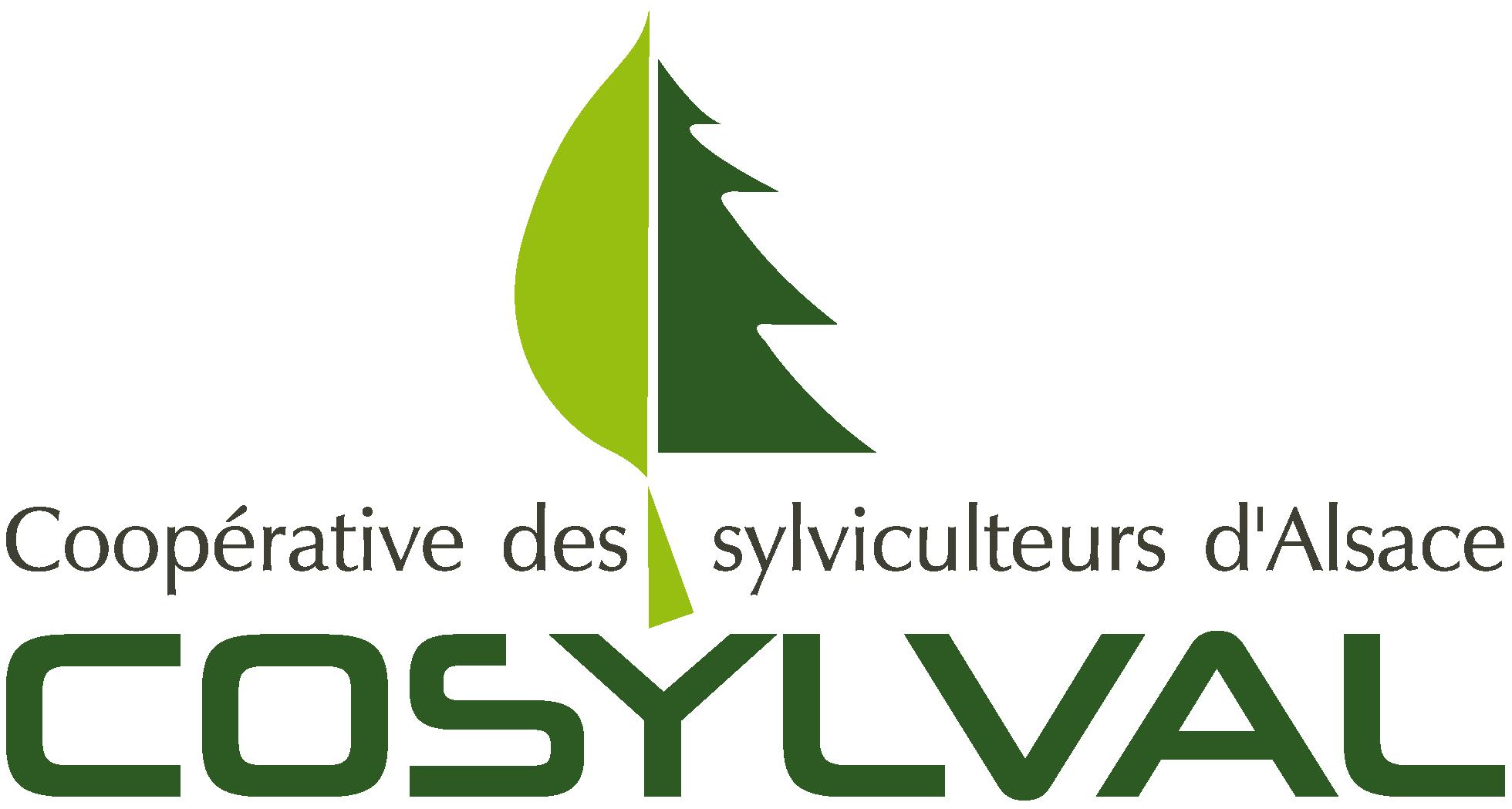 logo_cosylval
